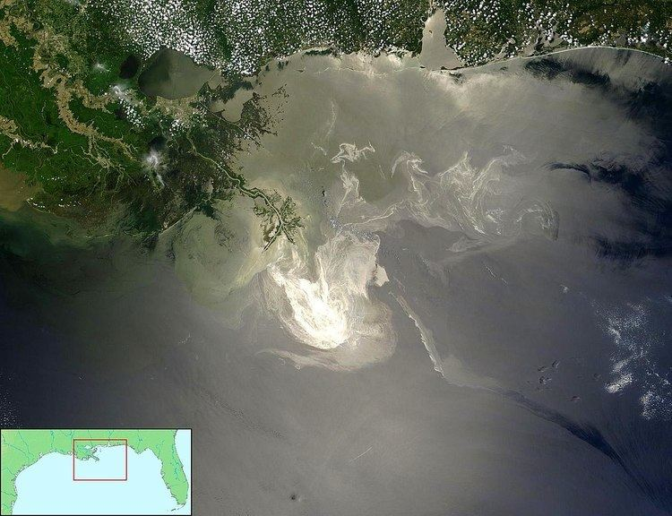 Environmental impact of the Deepwater Horizon oil spill