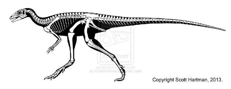 Eocursor Eocursor Pictures amp Facts The Dinosaur Database