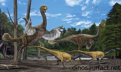 Eocursor Eocursor dinosaur