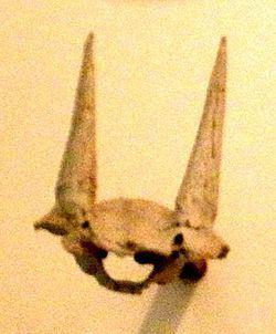 Eotragus httpsuploadwikimediaorgwikipediacommonsthu