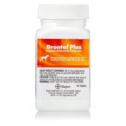 Epsiprantel Cestex Epsiprantel for Dogs and Cats with Tapeworm PetCareRX