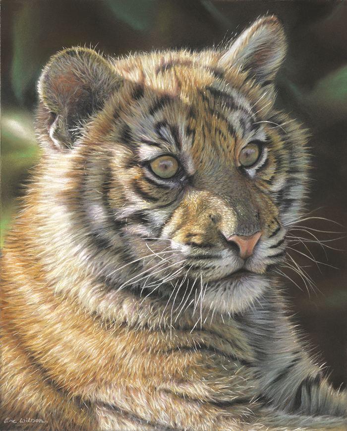 Eric Wilson (artist) Eric Wilson Wildlife Artist