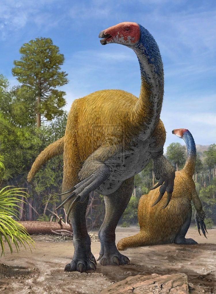 Erlikosaurus Erlikosaurus Pictures amp Facts The Dinosaur Database