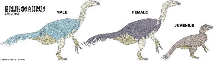 Erlikosaurus erlikosaurus DeviantArt