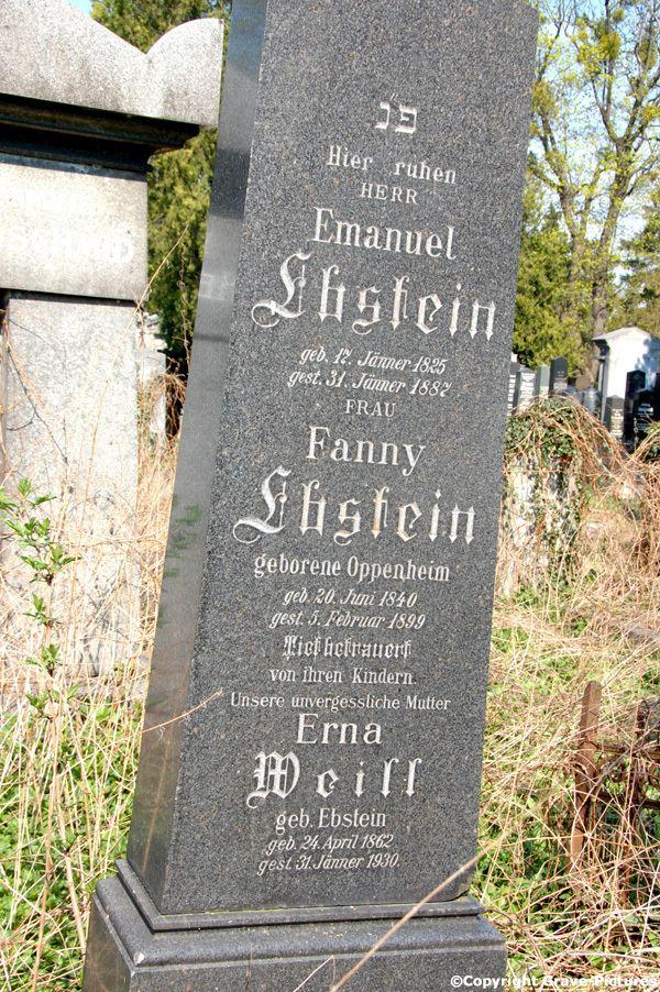 Erna Weill Ernestine Erna Weill Ebstein 1862 1930 Genealogy