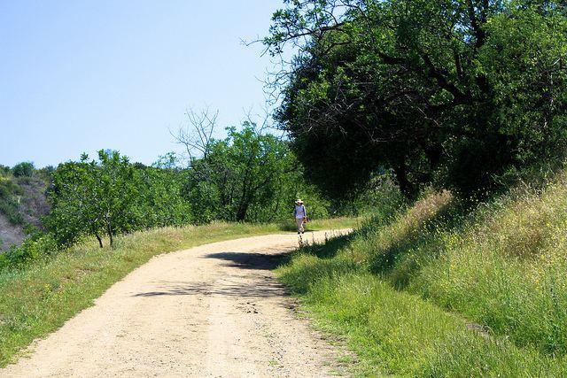 Ernest E. Debs Ernest E Debs Regional Park Modern Hiker