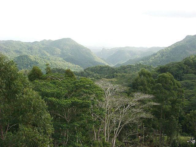 Escambray Mountains httpsuploadwikimediaorgwikipediacommons88