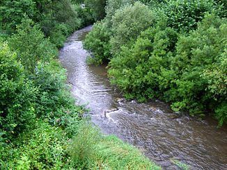 Eschach (Neckar) httpsuploadwikimediaorgwikipediacommonsthu