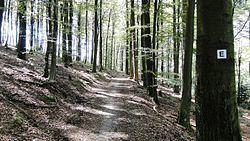 Eselsweg httpsuploadwikimediaorgwikipediacommonsthu