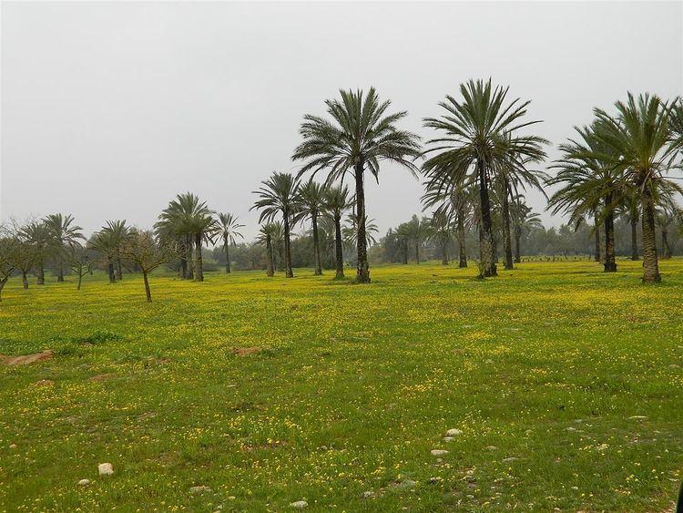 Eshkol National Park