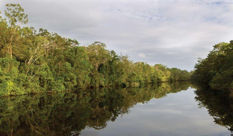 Esk River (New South Wales) wwwnationalparksnswgovaumedia3406FB3FA1BD4