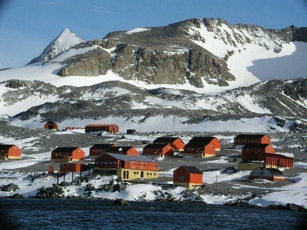 Esperanza Base Esperanza Base Antarctica Bill YoungDanita Delimont