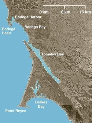 Estero de Limantour State Marine Reserve & Drakes Estero State Marine Conservation Area