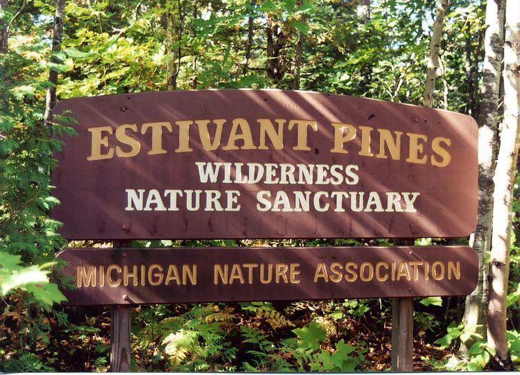 Estivant Pines