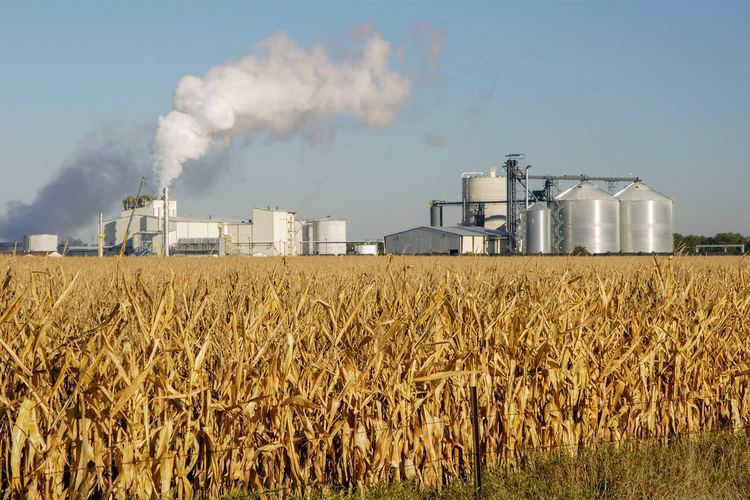 Ethanol Ethanol In Fuel Has Some Downsides According To Latest Studies