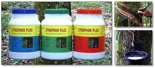 Ethephon Ethephon Plus Buy Ethephon Plus Price Photo Ethephon Plus from