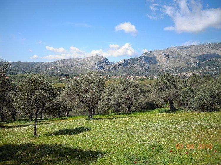 Euboea Beautiful Landscapes of Euboea
