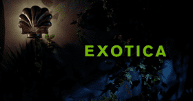 Exotica (film) Exotica film Wikipedia
