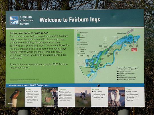 Fairburn Ings RSPB reserve - Alchetron, the free social