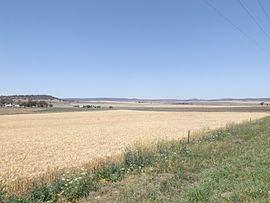 Felton, Queensland httpsuploadwikimediaorgwikipediacommonsthu