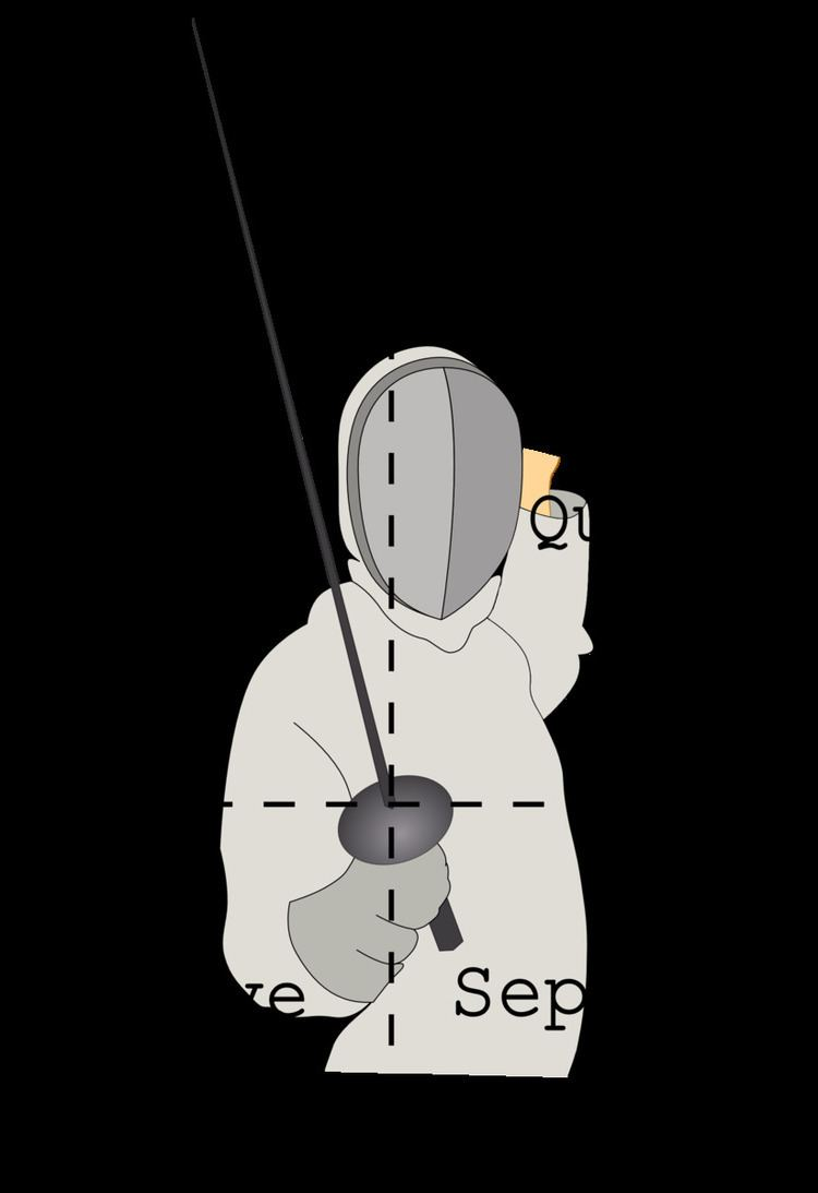 Fencing practice and techniques