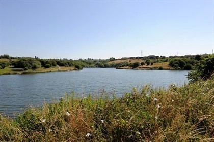 Fens Pools DMBC Buckpool Fens Pools and Barrow Hill Nature Reserves