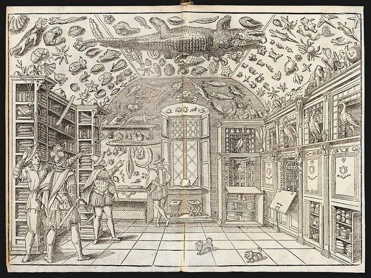 Ferrante Imperato The museum of Ferrante Imperato 1599 Die Welt der