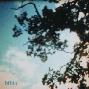 Fi (album) cdn3pitchforkcomalbums1128homepagelargef230
