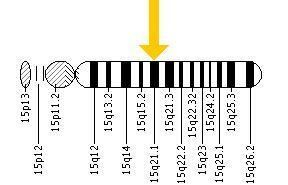 Fibrillin 1 Marfan Syndrome GGCWiki
