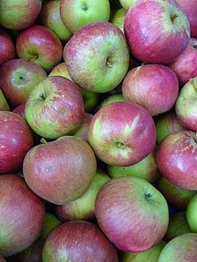 Fiesta (apple) httpsuploadwikimediaorgwikipediacommonsthu