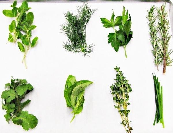 Fines herbes General Fine Herb Information Resource Smart Kitchen Online
