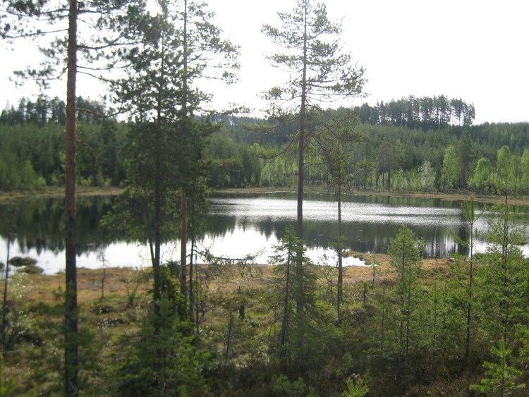 Finnskogen Finnskogen Wikipedia