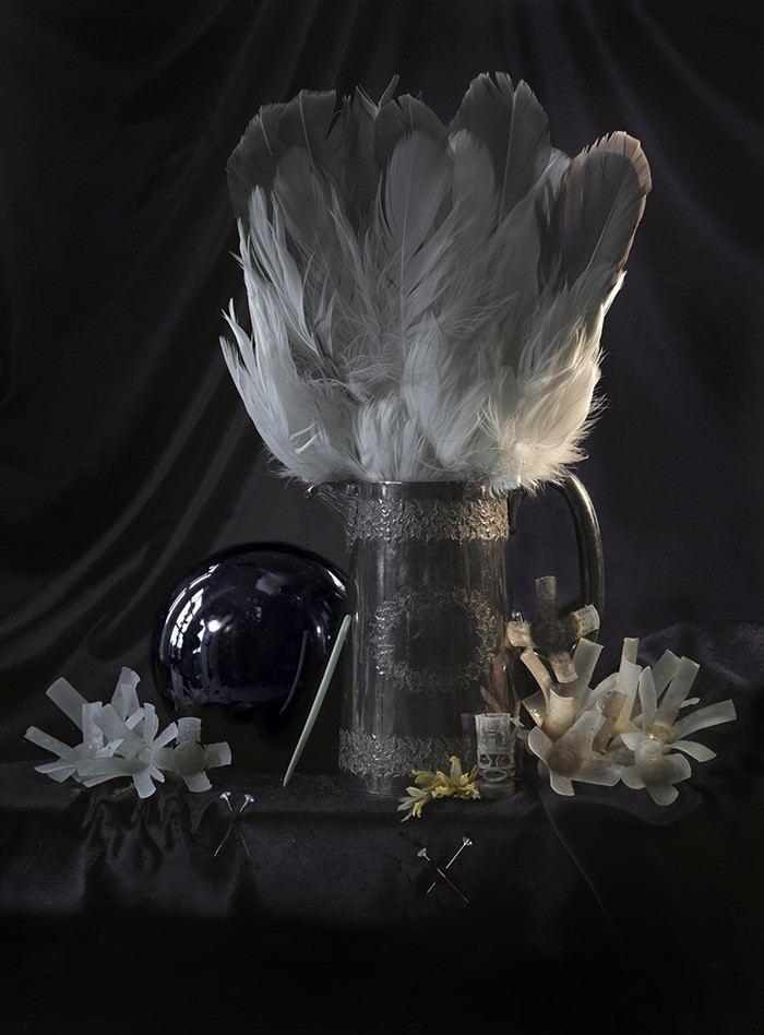 Fiona Pardington Fiona Pardington Suite Art Gallery New Zealand