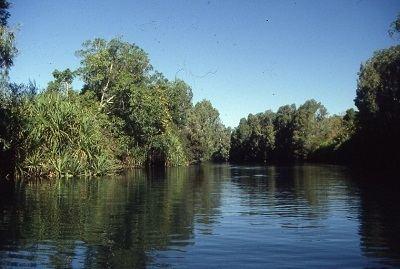 Fitzmaurice River wwwkempenidauwpcontentuploads201407Fitzma