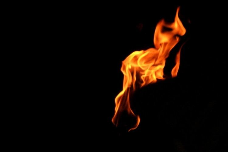 Flame & Citron movie scenes flame