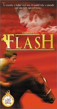 Flash (1997 film) httpsuploadwikimediaorgwikipediaen33fFla