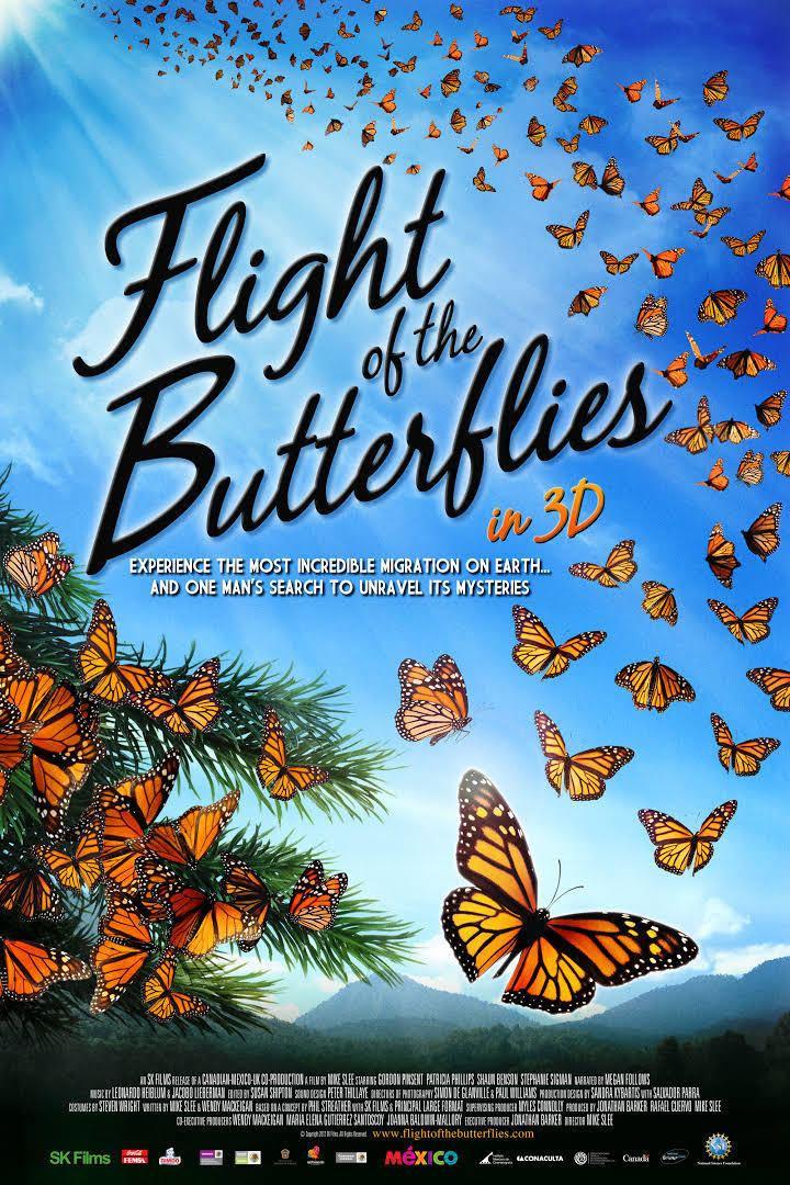 Flight of the Butterflies t1gstaticcomimagesqtbnANd9GcQAAmgGThysEi16Q