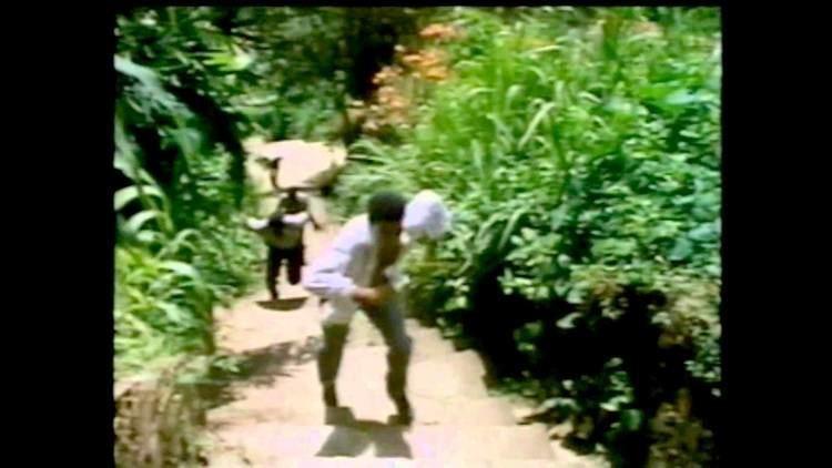 Flight of the Ibis Men of Gray II Movie Trailer Flight of the Ibis YouTube