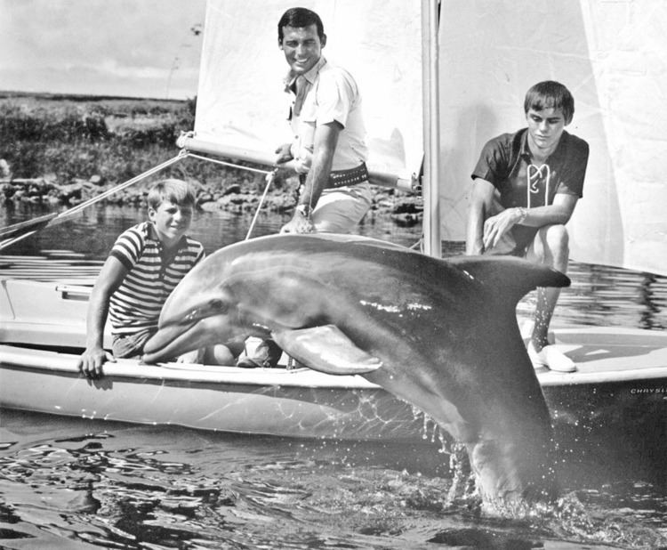 Flipper (1964 TV series) Everyone39s Favorite Dolphin Behind the Scenes Of TV Show quotFlipper