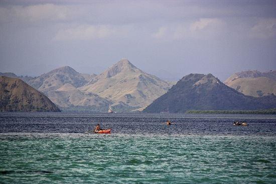 Flores Sea imageshuffingtonpostcom20140108floresseajpg