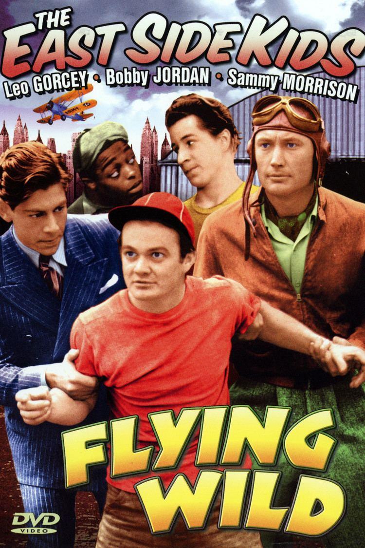 Flying Wild wwwgstaticcomtvthumbdvdboxart42985p42985d