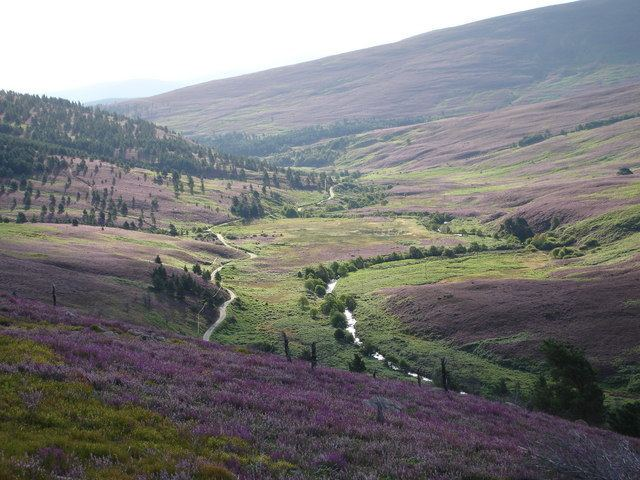 Forest of Birse Forest of Birse Stephen Whitby ccbysa20 Geograph Britain