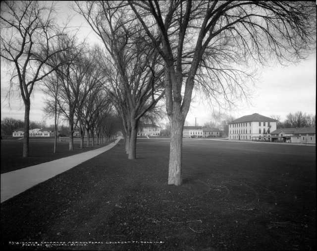Fort Collins, Colorado in the past, History of Fort Collins, Colorado