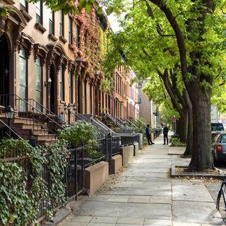 Fort Greene Brooklyn Alchetron The Free Social Encyclopedia