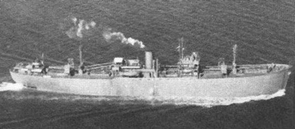 Fort ship