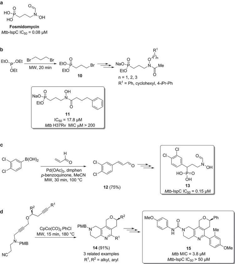 Fosmidomycin a Structure of fosmidomycin b Synthesis of fosmidomycin analogues