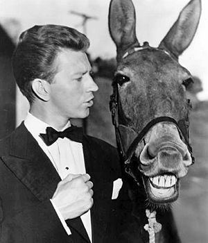 Francis the Talking Mule 1000 images about FRANCIS THE TALKING MULE on Pinterest Donald o