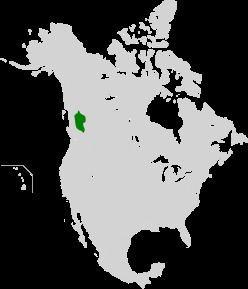 Fraser Plateau and Basin complex (WWF ecoregion) httpsuploadwikimediaorgwikipediacommonsthu