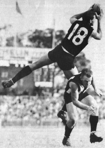 Fred Castledine Australian Football Fred Castledine Player Bio