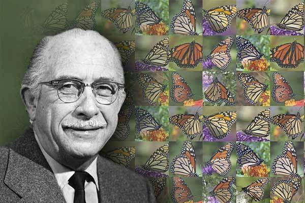Fred Urquhart Flight of the Butterflies